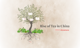 Rise of Tea in China