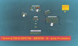 Copie de L'Epreuve ACTION DE PROMOTION ANIMATION- E11 - du Bac Pro Commerce