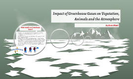 Impact of Greenhouse Gases on vegetation, animals and the At