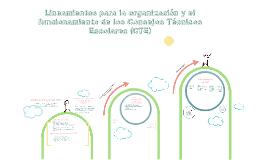 Copy of Lineamientos para la organización y el funcionamiento de los