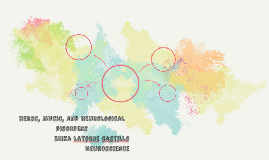 Herbs, Music, and Neurological disorders