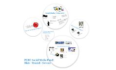 Social Media: The PERF Brief