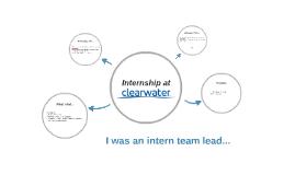 I was an intern team lead...