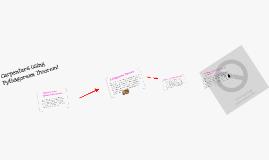 Copy of Carpenters Using Pythagorean Theorem