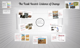 Fossil Evidence of Change