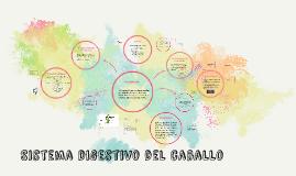 Copy of Sistema digestivo del caballo