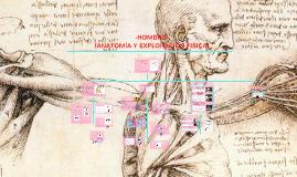 Copy of -HOMBRO-(ANATOMIA Y EXPLORACIÓN)