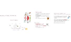 7-Servicio y comidas elaboradas