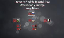 Proyecto Final de Español Tres: Descripción y Entrega
