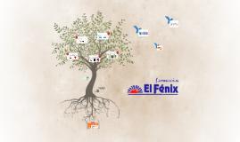 Farmacias Fenix 3er parcial
