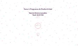 Tarea 4: Programas de Productividad