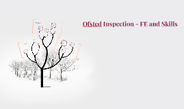 OFSted Inspection - FE and Skills