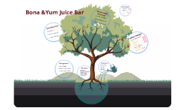 Bona & Yum Juice Bar