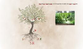 Privatwald: Segregative und Integrative Ansätze des Naturschutzes