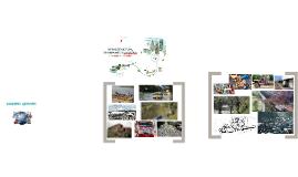 INFRAESTRUCTURA, TRANSPORTE Y LOGISTICA
