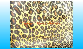 AHO Safari thru Africa