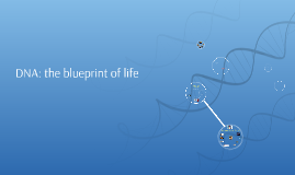 Dna the blueprint of life by jamie h lee on prezi malvernweather Images