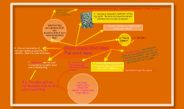Copy of Word Study Mind Map - Parts of Speech and Word Origins