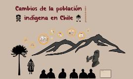 Análisis demográfico de los pueblos originarios en Chile (avance)