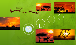 Kenya!
