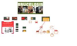 Copia de Copy of introducción a los diseños epidemilogicos