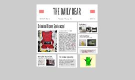 THE DAILY BEAR