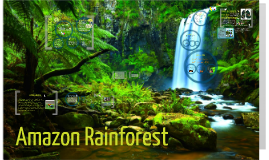Copy of Tropical Rainforest - Powerpoint