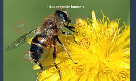 Copy of las abejas de bronce timeline