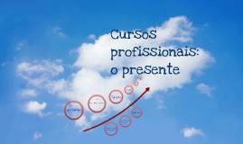 Cursos profissionais 2013