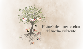 Historia de la protección del medio ambiente