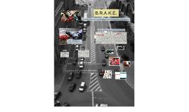 Copy of B.R.A.K.E.