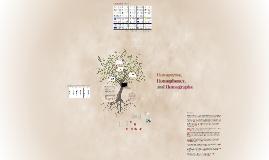 Homonyms, Homophones, and Homographs