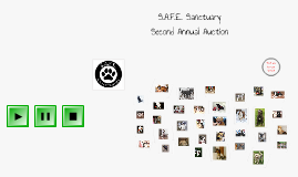 SAFE Sanctuary
