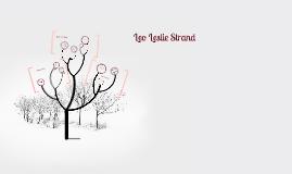 Leo Leslie Strand