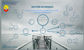 Copy of GESTION DE RIESGOS (CMMI)