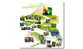 Copy of Peligro de Extinción
