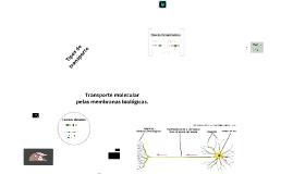Transporte molecular pela membrana