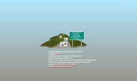 Copy of Los Procesos  de descripción y visualizacion geometrica que
