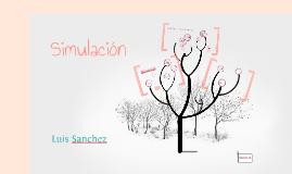 Copy of SIMULACION