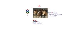 Copy of Equine Genie