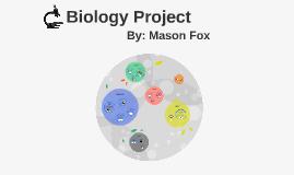 Biology Semester 2 Project
