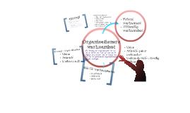 Oranisationers verksamhet