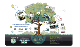 Connecting Sustainability Education with the Social Studies