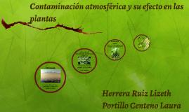 Contaminación atmosférica y su efecto en las plantas