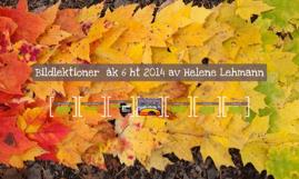 Bildlektioner  åk 6 ht 2014 av Helene Lehmann