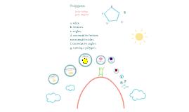 Copy of Polygons