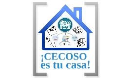 INDUCCIONES CECOSO