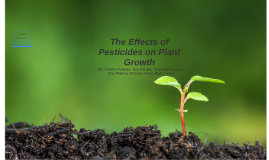 The Effects of Pesticides on Plant Growth