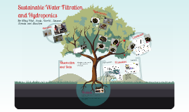 Sustainable Water Filtration
