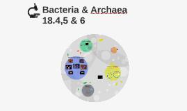 Bacteria & Archaea